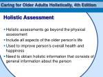 holistic assessment