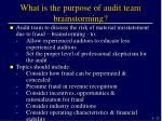 what is the purpose of audit team brainstorming
