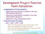 development project function point calculation