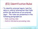 ei identification rules