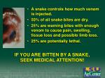 if you are bitten by a snake seek medical attention