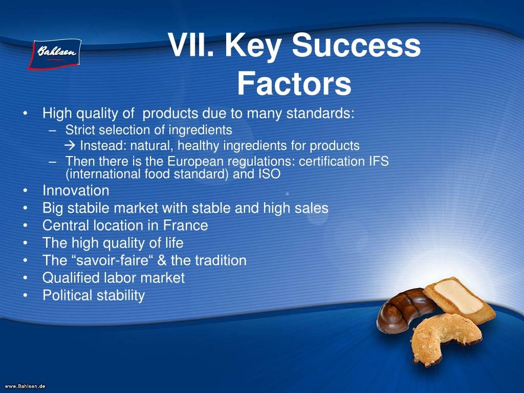 VII. Key Success Factors