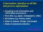 cyberization interface to all bits and process information