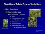 seedless table grape varieties12