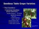 seedless table grape varieties13