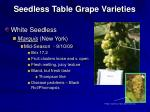 seedless table grape varieties18