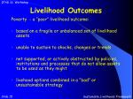 livelihood outcomes