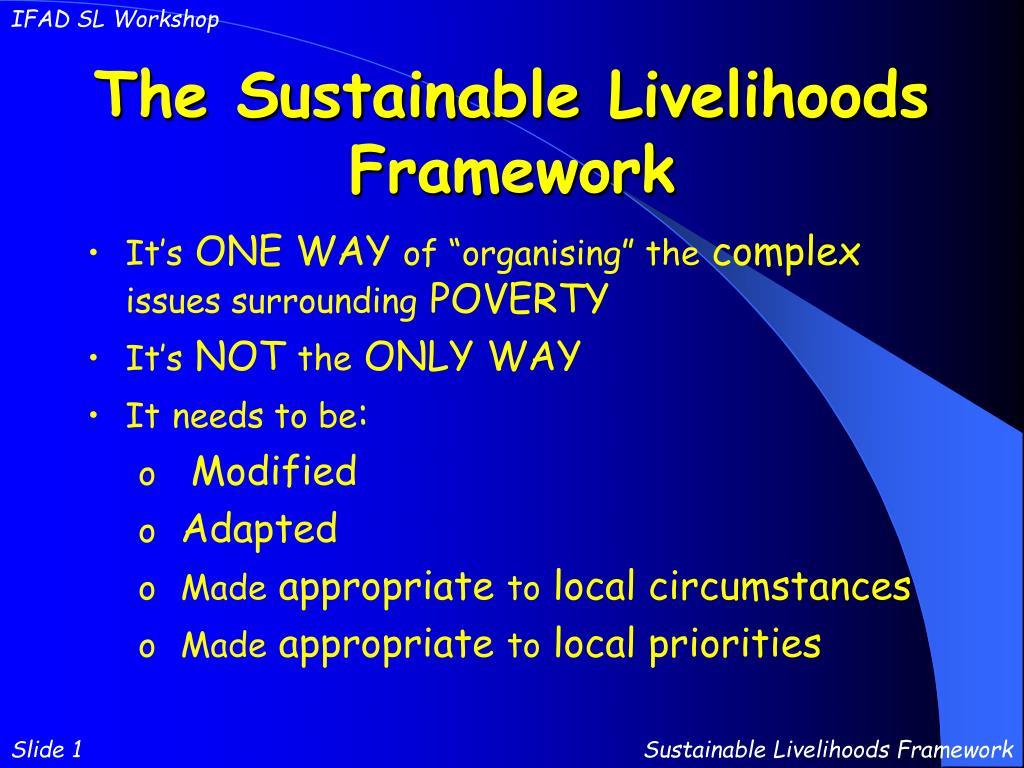 the sustainable livelihoods framework l.