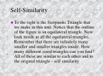 self similarity