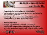 process development and scale up
