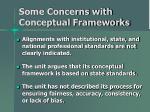 some concerns with conceptual frameworks