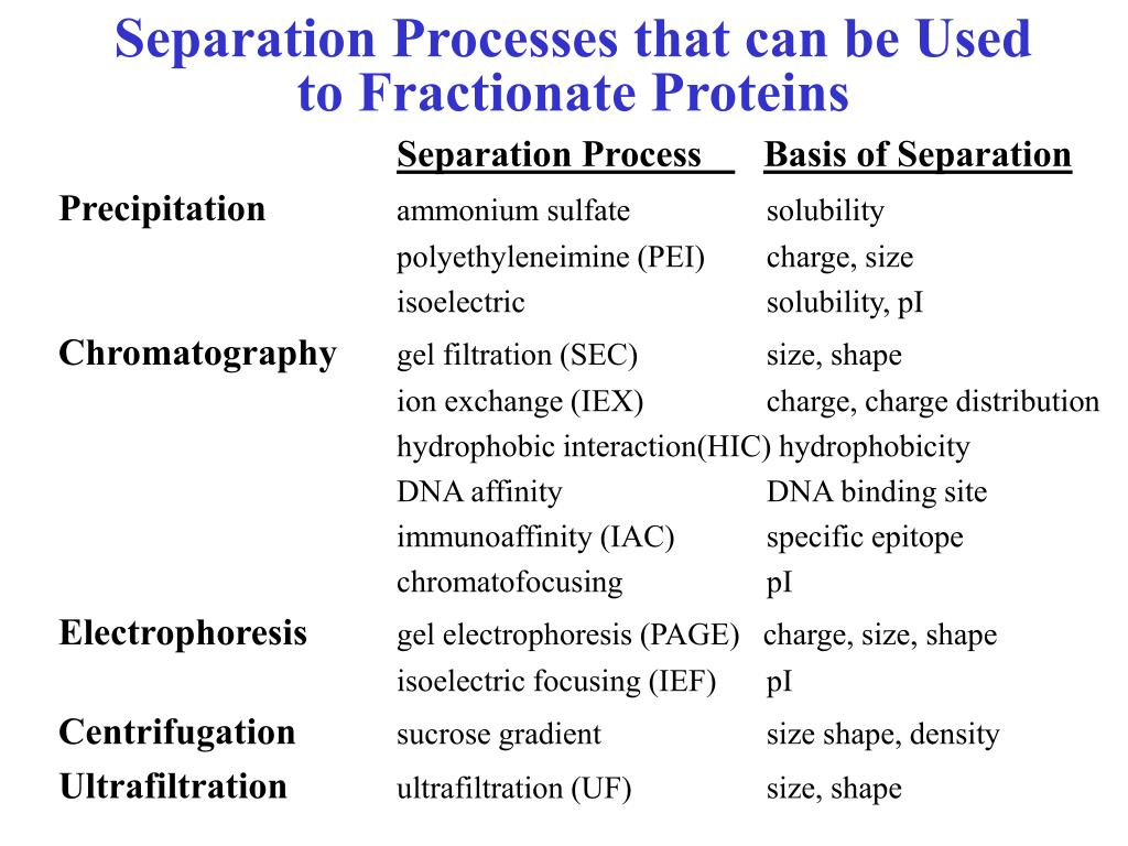 Separation Processes that can be Used to Fractionate Proteins