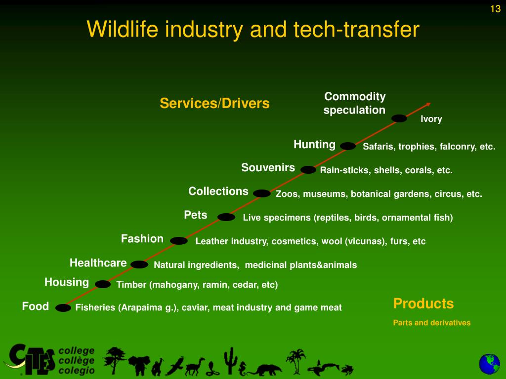 Wildlife industry and tech-transfer