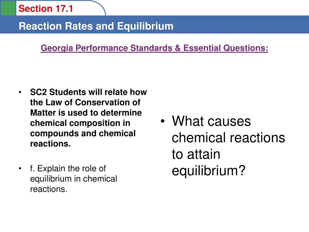 georgia performance standards essential questions l.