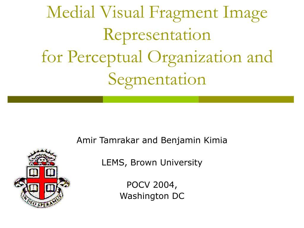 medial visual fragment image representation for perceptual organization and segmentation l.