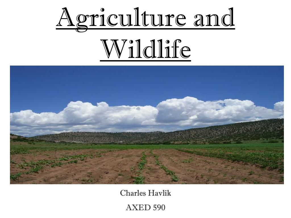 agriculture and wildlife l.