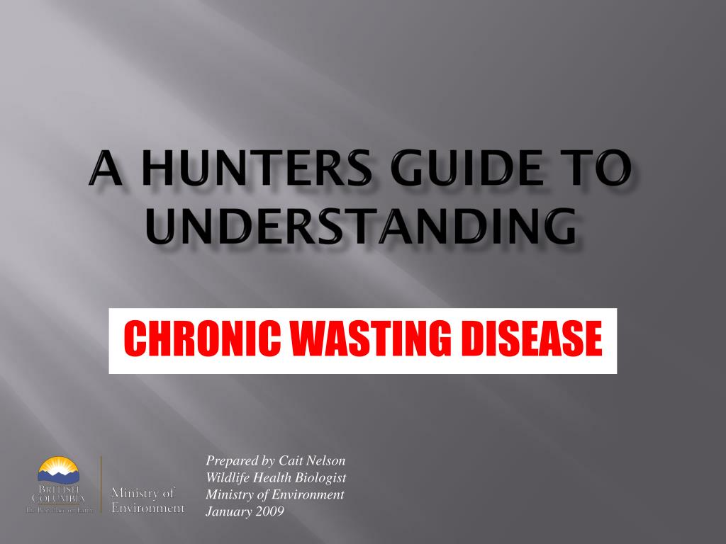 a hunters guide to understanding l.