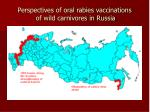 perspectives of oral rabies vaccinations of wild carnivores in russia