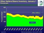 other heifers steers inventory january 1 pennsylvania