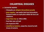 chlamydial diseases