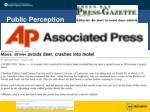 public perception