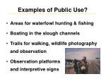 examples of public use
