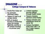 imagine college campus tobacco