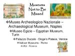museums not to be missed