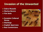 invasion of the unwanted