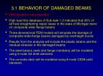3 1 behavior of damaged beams