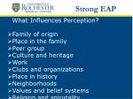what influences perception