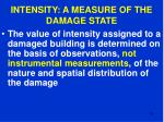 intensity a measure of the damage state29