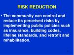 risk reduction101