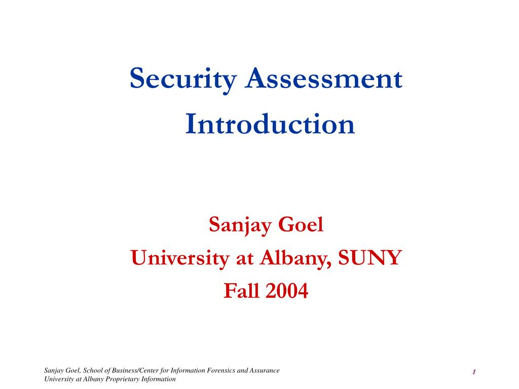 security assessment introduction sanjay goel university at albany suny fall 2004 l.