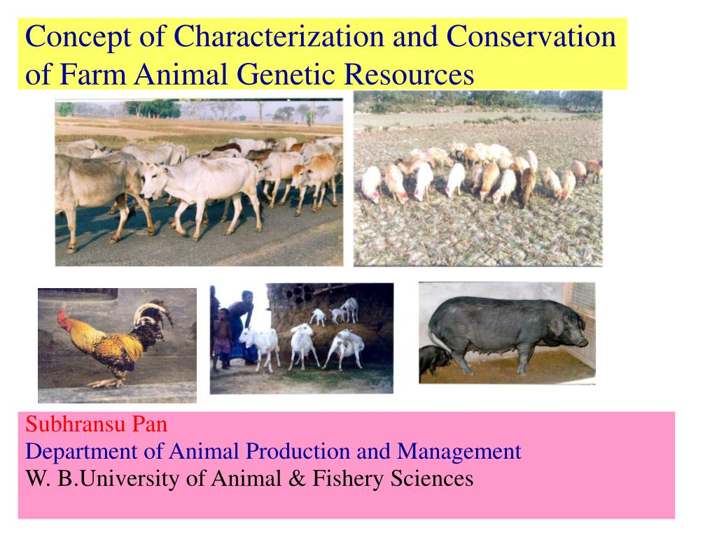 concept of characterization and conservation of farm animal genetic resources l.