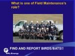 what is one of field maintenance s role
