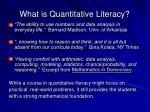 what is quantitative literacy