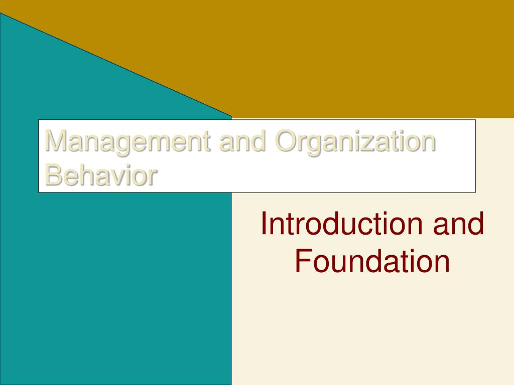 management and organization behavior l.