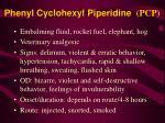 phenyl cyclohexyl piperidine pcp