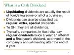 what is a cash dividend13