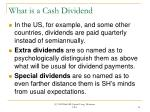 what is a cash dividend14