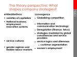 the theory perspective what shapes company strategies