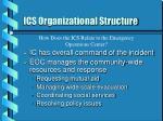 ics organizational structure23