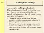multisegment strategy