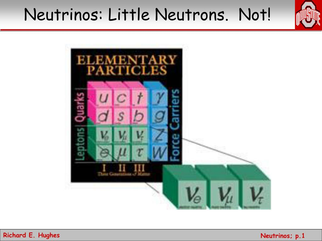 neutrinos little neutrons not l.