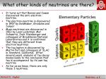 what other kinds of neutrinos are there