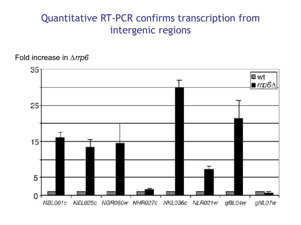 Quantitative RT-PCR confirms transcription from intergenic regions