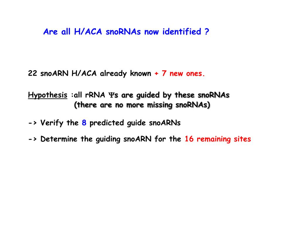 Are all H/ACA snoRNAs now identified ?