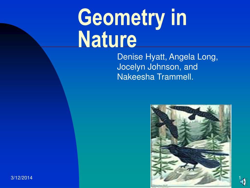 geometry in nature l.