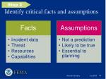 identify critical facts and assumptions